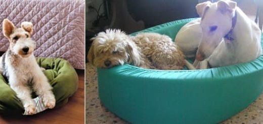 Шьем лежанку для собаки
