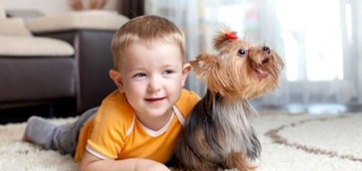 Как же воспитать и обучить ребенка до 4 лет